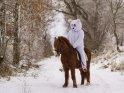Person im Eisbärenkostüm sitzt auf einem Pony auf einem verschneiten Weg