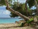 Dieses Motiv befindet sich seit dem 27. März 2017 in der Kategorie Strandfotos von Mallorca.