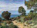 Dieses Motiv ist am 23.03.2018 neu in die Kategorie Landschaftsfotos von Mallorca aufgenommen worden.