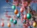 Viele Grüße zu einem glücklichen, friedlichen und gesunden Osterfest!    Aus der Kategorie Osterkarten