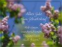 Alles Gute zum Geburtstag!  Hab einen wunderschönen Tag und lass dich feiern!    Dieses Motiv ist am 14.05.2017 neu in die Kategorie Geburtstagskarten für Blumenliebhaber  aufgenommen worden.