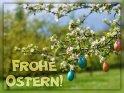 Frohe Ostern!    Dieses Motiv finden Sie seit dem 25. März 2018 in der Kategorie Osterkarten.
