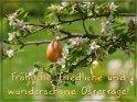 Fröhliche, friedliche und wunderschöne Ostertage!    Aus der Kategorie Osterkarten