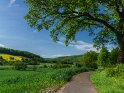 Radweg im Wesertal, aufgenommen Mitte Mai. Der Hügel links im Bild liegt in Hessen, der Vordergrund in Niedersachsen.