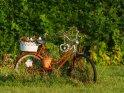 Geschmücktes Fahrrad