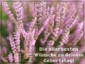 Die allerbesten Wünsche zu deinem Geburtstag!    Dieses Kartenmotiv wurde am 28. August 2017 neu in die Kategorie Geburtstagskarten für Blumenliebhaber  aufgenommen.