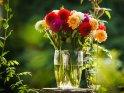 Dahlien-Blumenstrauss