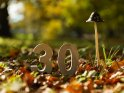 30    Dieses Motiv gibt es auf CoolPhotos.de seit dem 17. Oktober 2017. Sie finden es in der Kategorie 30.