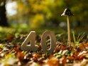 40    Dieses Motiv finden Sie seit dem 17. Oktober 2017 in der Kategorie Zahlen.