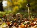 60    Dieses Motiv gibt es auf CoolPhotos.de seit dem 17. Oktober 2017. Sie finden es in der Kategorie 60.
