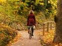 Radfahrerin im Herbst