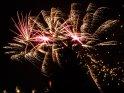 Feuerwerk hinter einem Baum