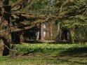 Fahrrad an einem Baum in den frühlingshaften Schillerwiesen in Göttingen