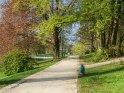 Frühlingshafter Weg in einem Park in Bielefeld