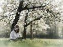 Eine Frau sitzt mit einer Trommel unter einem blühenden Kirschbaum.    Dieses Motiv befindet sich seit dem 27. April 2018 in der Kategorie Musik.
