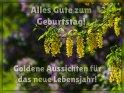 Alles Gute zum Geburtstag!  Goldene Aussichten für das neue Lebensjahr!    Aus der Kategorie Geburtstagskarten für Blumenliebhaber
