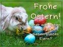 Frohe Ostern!  Aber was haben immer alle mit diesen bunten Eiern?    Dieses Motiv ist am 16.04.2019 neu in die Kategorie Tierische Osterkarten aufgenommen worden.