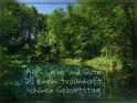 Alles Liebe und Gute zu einem traumhaft schönen Geburtstag!    Dieses Motiv ist am 20.07.2018 neu in die Kategorie Geburtstagskarten aus Niedersachsen aufgenommen worden.