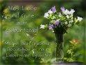 Alles Liebe und Gute zum Geburtstag!  Mögen dich Glück und Gesundheit im neuen Lebensjahr begleiten!    Dieses Motiv ist am 17.07.2018 neu in die Kategorie Geburtstagskarten für Blumenliebhaber  aufgenommen worden.