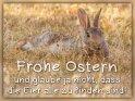 Frohe Ostern  und glaube ja nicht, dass die Eier alle zu finden sind!    Dieses Motiv ist am 18.04.2019 neu in die Kategorie Tierische Osterkarten aufgenommen worden.