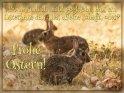 Frohe Ostern!  Du hast doch nicht geglaubt, dass ein Osterhase das alles alleine schafft, oder?    Dieses Motiv ist am 15.04.2019 neu in die Kategorie Tierische Osterkarten aufgenommen worden.