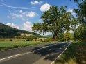 Prachvolle Eiche Anfang September im Wesertal. Der Vordergrund befindet sich in Niedersachsen, während das linke Ufer und der Hügel links im Bild sich in Hessen befinden.