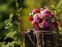 Blumenstrauß mit Rosen und Bartnelken