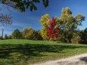 Am Göttinger Kiessee im Herbst