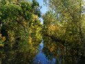 Die Rhume im Herbst    Dieses Motiv ist am 08.11.2018 neu in die Kategorie Herbstlandschaften aufgenommen worden.