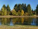 Herbst am Sumpf-Teich bei Buntenbock