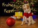 Frohes Fest!    Dieses Motiv findet sich seit dem 23. Dezember 2018 in der Kategorie Weihnachtskarten.