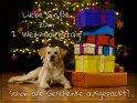 Liebe Grüße zum 2. Weihnachtstag!  Schon alle Geschenke ausgepackt?    Dieses Motiv findet sich seit dem 26. Dezember 2018 in der Kategorie Weihnachtskarten.