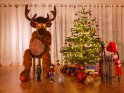 Dieses Motiv ist am 14.12.2018 neu in die Kategorie Weihnachtsbilder aufgenommen worden.