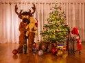 Dieses Motiv ist am 13.12.2018 neu in die Kategorie Weihnachtsbilder aufgenommen worden.