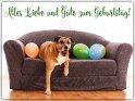 Alles Liebe und Gute zum Geburtstag!    Dieses Motiv ist am 12.03.2019 neu in die Kategorie Geburtstagskarten für Hundefans aufgenommen worden.