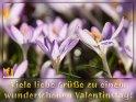 Viele liebe Grüße zu einem wunderschönen Valentinstag!    Dieses Motiv ist am 13.02.2020 neu in die Kategorie Valentinstag aufgenommen worden.