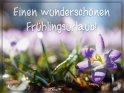 Einen wunderschönen Frühlingsurlaub!    Dieses Motiv ist am 17.02.2020 neu in die Kategorie Urlaubsgrüße (in den Urlaub) aufgenommen worden.