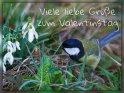 Viele liebe Grüße zum Valentinstag    Dieses Motiv ist am 12.02.2020 neu in die Kategorie Valentinstag aufgenommen worden.
