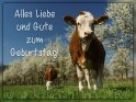 Alles Liebe und Gute zum Geburtstag!    Dieses Kartenmotiv ist seit dem 02. Mai 2019 in der Kategorie Geburtstagskarten für Tierfreunde.