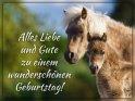 Alles Liebe und Gute zu einem wunderschönen Geburtstag!    Dieses Motiv befindet sich seit dem 29. Mai 2019 in der Kategorie Geburtstagskarten für Pferdebegeisterte.