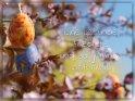 Eine gesunde, friedliche und sorgenfreie Osterzeit!    Dieses Motiv ist am 06.04.2020 neu in die Kategorie Osterkarten für schwierigen Zeiten aufgenommen worden.