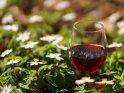 Dieses Kartenmotiv ist seit dem 25. März 2020 in der Kategorie Wein und Weintrauben.