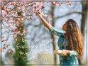 Eine gesunde, friedliche und wunderschöne Osterzeit!    Dieses Motiv findet sich seit dem 31. März 2020 in der Kategorie Osterkarten.