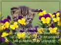 Ganz herzliche Blumengrüße zu einem wunderschönen Geburtstag und einen guten Start in ein gesundes und glückliches neues Lebensjahr!    Dieses Motiv ist am 31.05.2020 neu in die Kategorie Geburtstagskarten für Blumenliebhaber  aufgenommen worden.