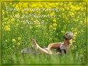 Einen wunderschönen und entspannten Maitag!    Dieses Motiv ist am 22.05.2020 neu in die Kategorie Frühlingskarten aufgenommen worden.