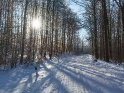 Dieses Motiv ist am 15.02.2021 neu in die Kategorie Winterlandschaften aufgenommen worden.