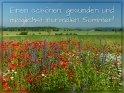 Einen schönen, gesunden und möglichst normalen Sommer!    Dieses Motiv ist am 19.06.2021 neu in die Kategorie Sommergrüße aufgenommen worden.