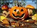 Einen schönen 24. Oktober