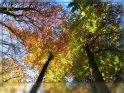 Einen schönen 27. Oktober