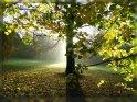 Einen schönen 24. November